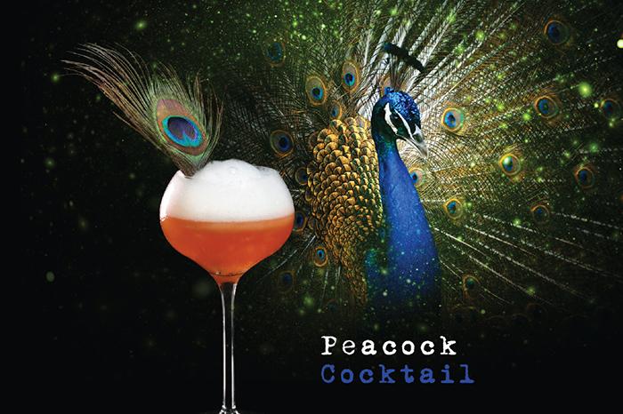 Ly cocktail mang tên gọi những loài chim 5