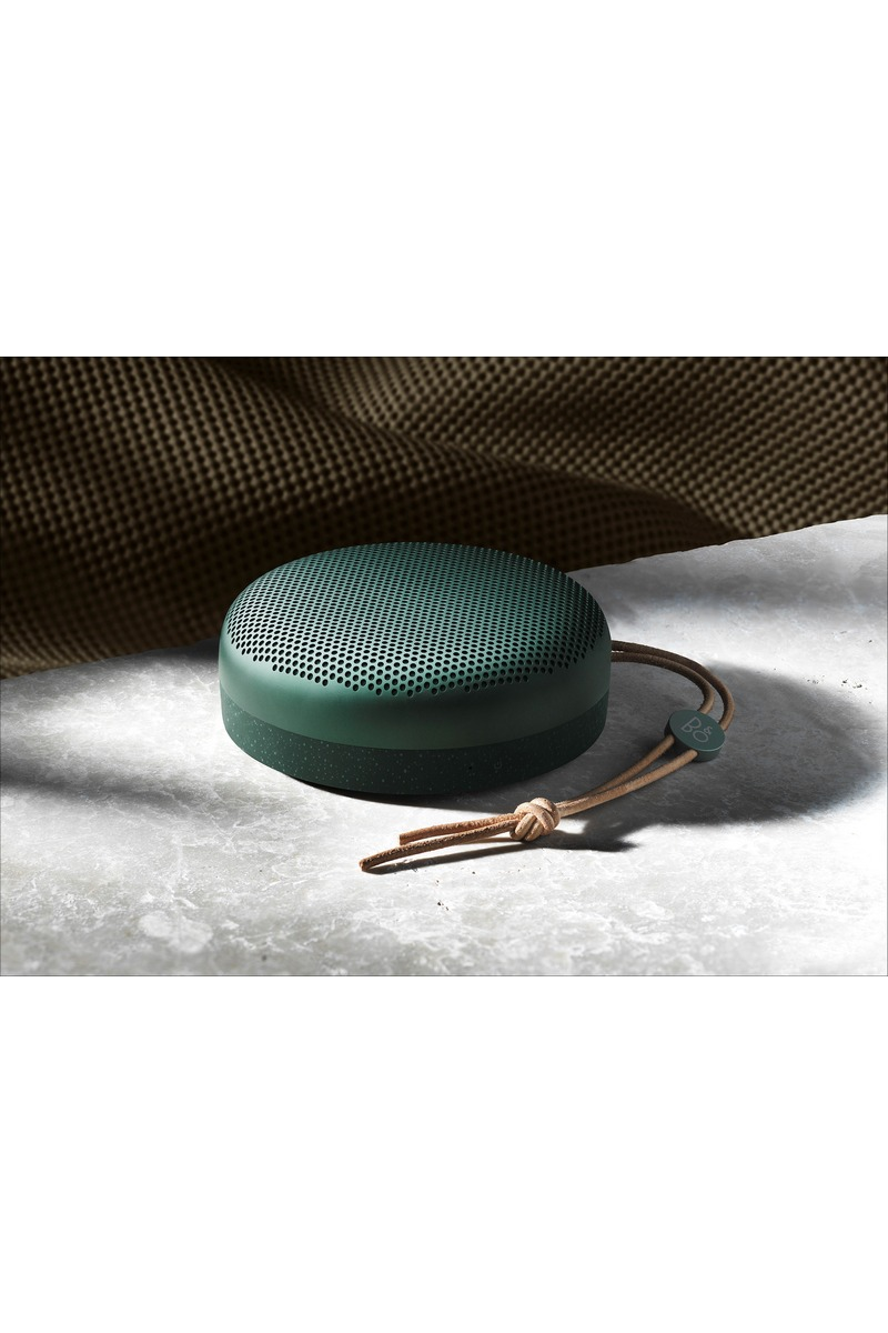 Beoplay A1 Pine 3