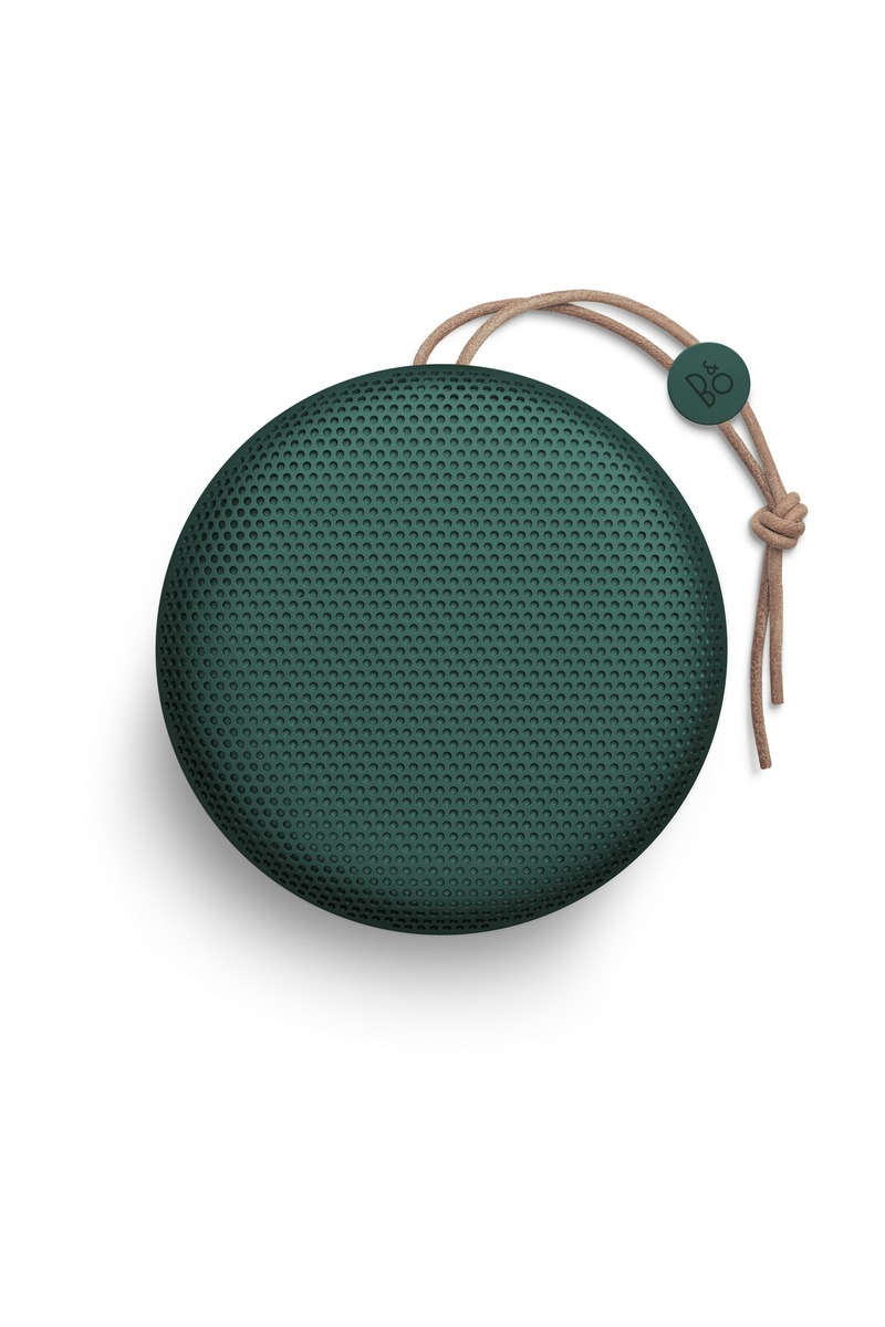 Beoplay A1 Pine 1